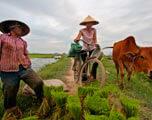 fietsvakantie vietnam en cambodja
